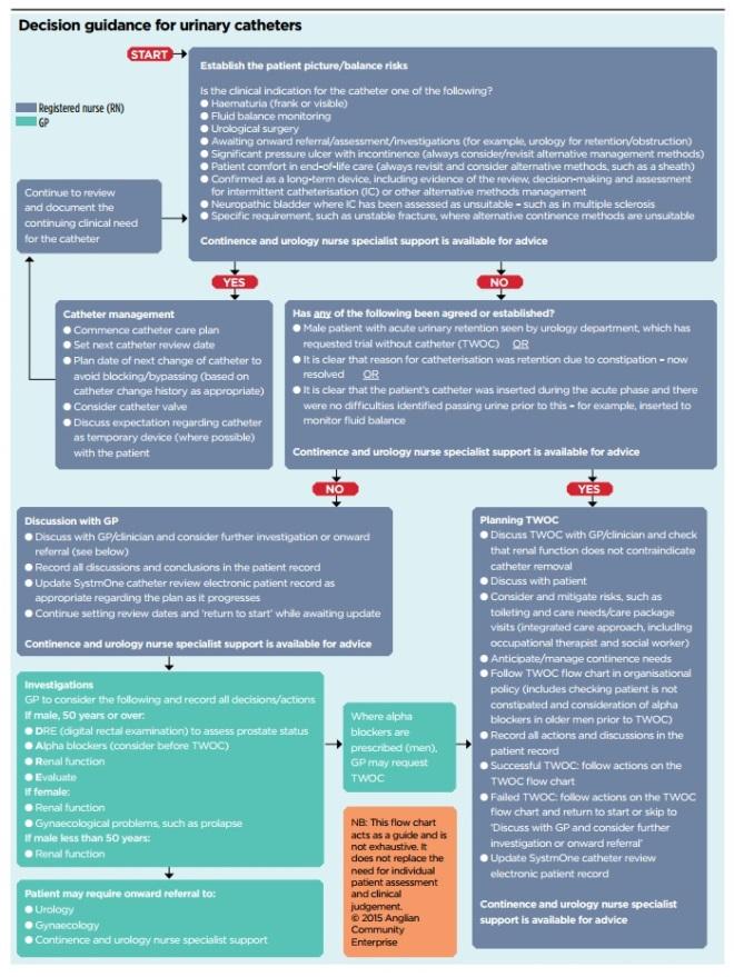 Developing A Guide For Nurses To Undertake Regular Catheter