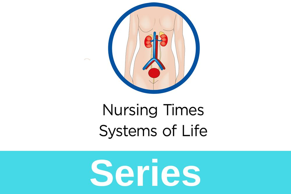 Anatomy and physiology of ageing 4: the renal system