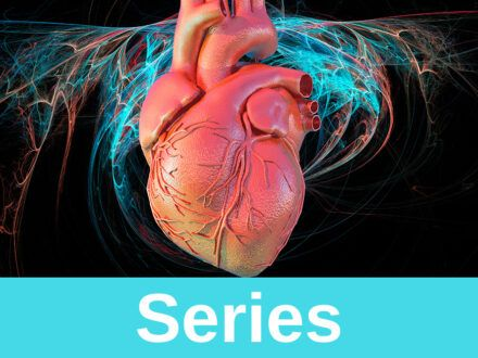 Cardiac system 1: anatomy and physiology