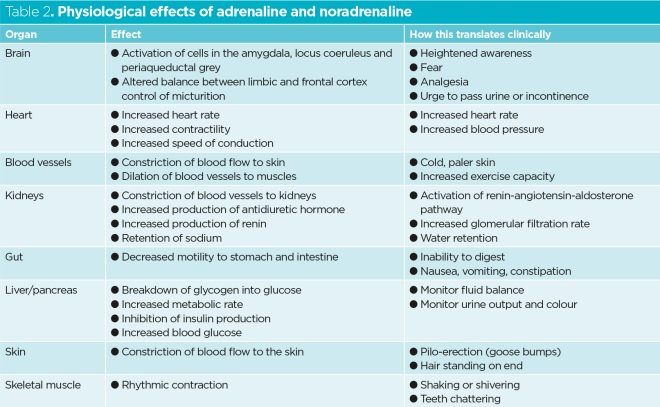 table 2 physiological effects of adrenaline