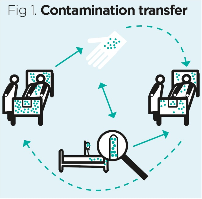 fig 1 contamination transfer