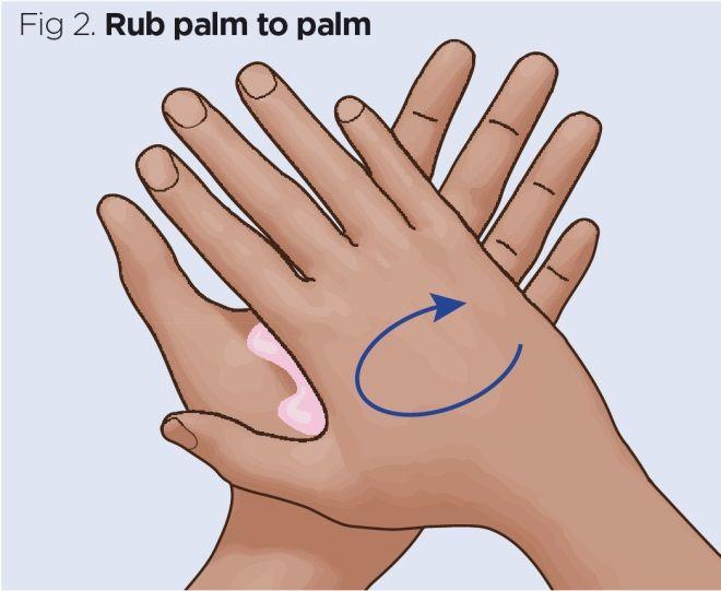 fig 2 rub palm to palm