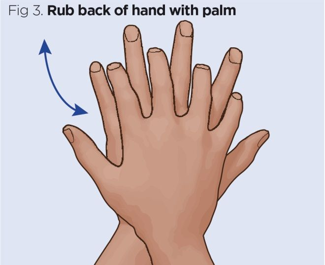 fig 3 rub back of hand with palm