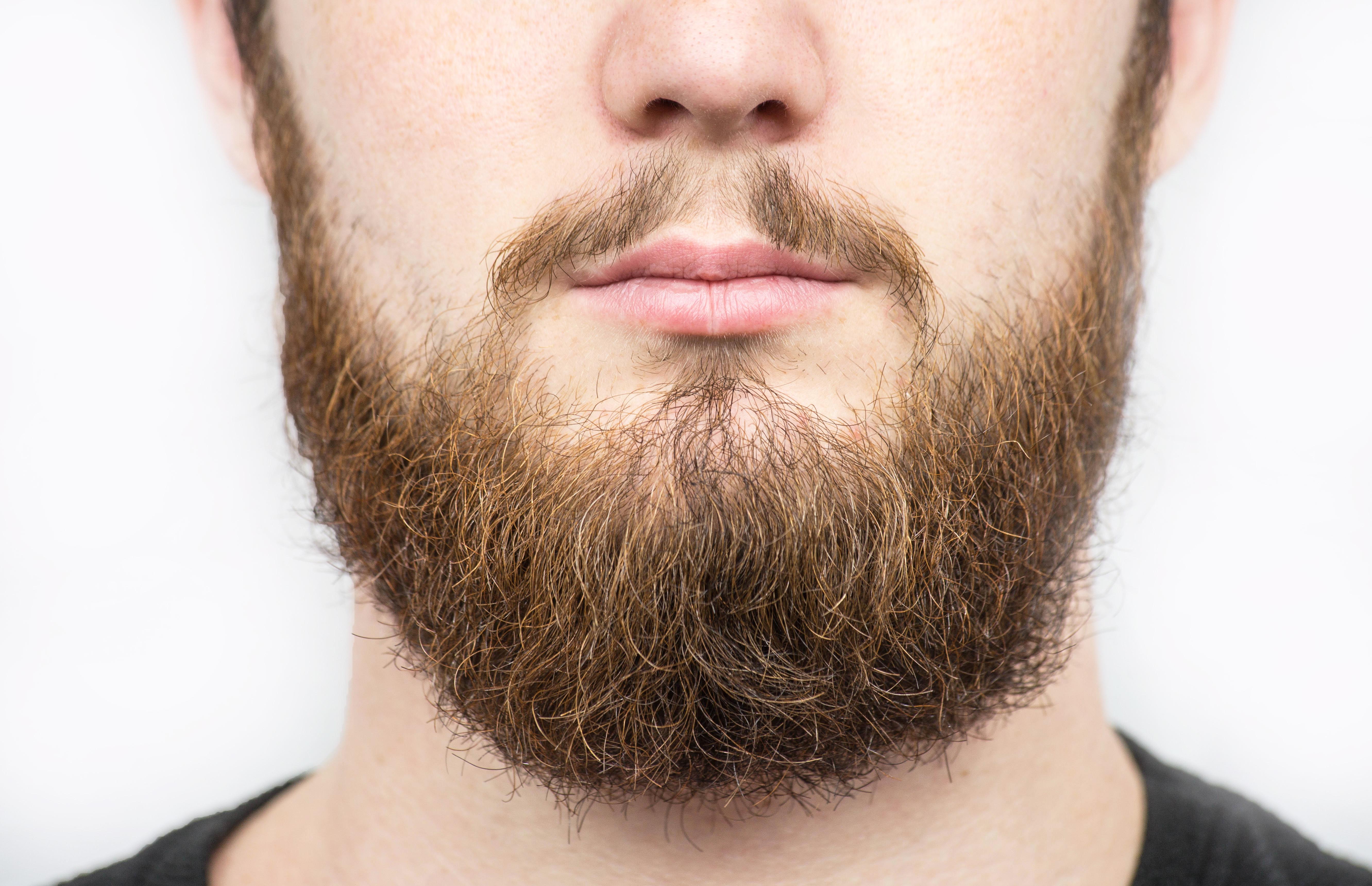 Fabulous New Coronavirus Guidance Tackles Issue Of Beards Among Nhs Staff Schematic Wiring Diagrams Amerangerunnerswayorg